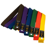 Kaiten värivyöt valkoinen, keltainen, oranssi, vihreä, sininen, ruskea ja violetti